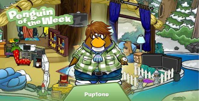 PenguinoftheWeek_Pup1one